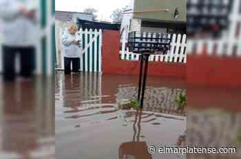 """Inundación en Parque Palermo: """"Cada vez que llueve es volver a empezar"""" - El Marplatense"""