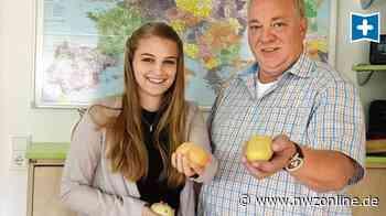 Ware Für In- und Ausland: In Westerstede geht's tonnenweise um Kartoffeln - Nordwest-Zeitung