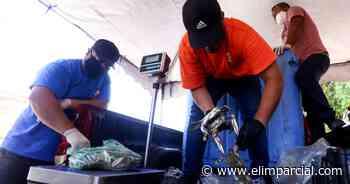 Pescadores llaman a reactivar San Felipe - ELIMPARCIAL.COM
