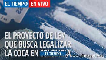 Conozca el proyecto de ley que busca legalizar la cocaína en Colombia - El Tiempo