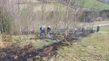 Waldbrand im Kendlgraben - NÖN.at