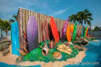 Escola de surfe é inaugurada virtualmente em Praia Grande, SP - G1