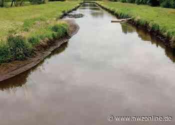 Wenig Niederschlag Rund Um Barssel: Gewässer trocknen immer weiter aus - nwzonline.de
