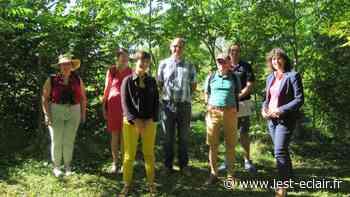Éliminer les plantes invasives de l'île Olive à Nogent-sur-Seine - L'Est Eclair