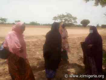 Living with pain and poverty: Story of Jigawa state women farmers - Internatinal Centre For Investigative Reporting