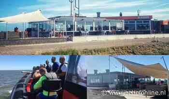 Zeehonden spotten in Lauwersoog, nu met korting in de maand juli! - actiefonline.nl