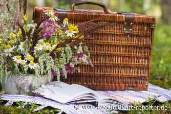 "In Dannenfels im ""Park der Sinne"": ""Picknick in Pink"" der Landfrauen - Wochenblatt-Reporter"