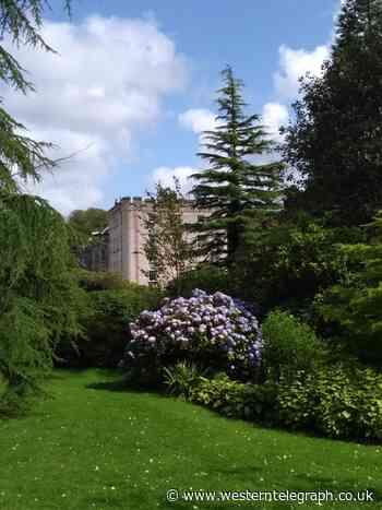 Picton castle photo wins Amazon voucher in Pembrokeshire County Council competition - Western Telegraph