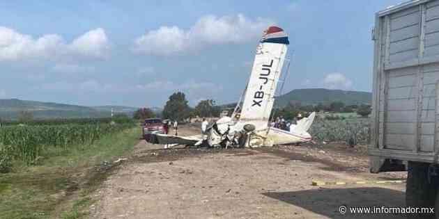 Avioneta cae en cultivos de agave en Romita, Guanajuato - EL INFORMADOR