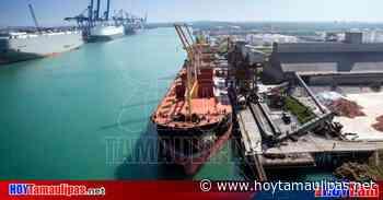 Cierra Puerto de Altamira primer semestre con 9 millones de toneladas - Hoy Tamaulipas