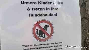 """Ärger um Hundekot in Meppen-Esterfeld: """"Werden Ihnen die Hundehaufen ins Gesicht drücken"""" - Neue Osnabrücker Zeitung"""