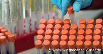 Familie aus Oestrich-Winkel mit Corona-Virus infiziert - Wiesbadener Kurier