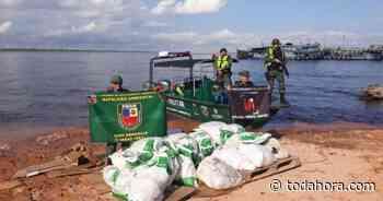Duas toneladas de pirarucu ilegal são apreendidas em Manacapuru - Toda Hora