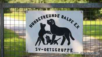 Vorwurf der Wahlmanipulation: Ärger bei den Hundefreunden Balve - come-on.de