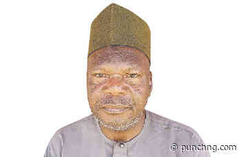 Some of our members died, others developed different ailments —Adamu, Chairman, Bauchi poly pensioners - The Punch