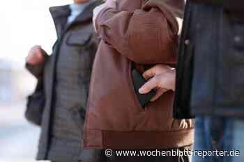 Polizei Pirmasens sucht Zeugen: Geldbeutel beim Einkauf aus der Einkaufstasche gestohlen - Pirmasens - Wochenblatt-Reporter