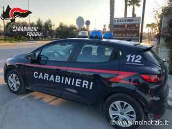 San Ferdinando di Puglia: l'inseguimento finisce con l'auto contro un marciapiede, arrestato 26enne - Noi Notizie