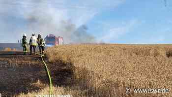 Getreidefeld bei Schmittweiler brennt - SWR