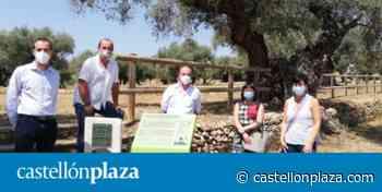 Las diputaciones de Castellón, Tarragona y Teruel reivindican el patrimonio del Sénia - castellonplaza.com