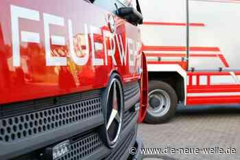 Germersheim: Flächenbrand auf der alten Werft durch Pollenflug - die neue welle