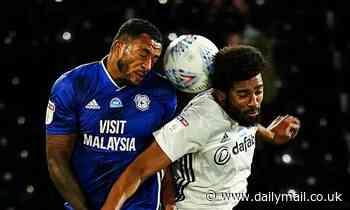 Cardiff City vs Fulham - latest Championship play-off score