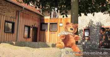 Riedstadt: Teddy gesichtet an Altrheinbrücke - Echo Online