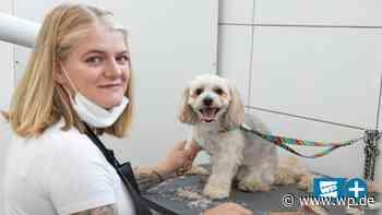 Kreuztal: Feiner Fiffi bietet Pflege und Frisuren für Hunde - Westfalenpost