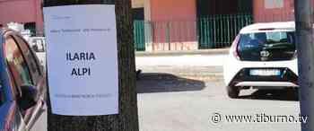 Monterotondo - Un nome agli alberi della Circonvallazione per salvarli dal taglio [Video] - Tiburno.tv Tiburno.tv - Tiburno.tv