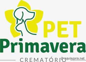 Pet Primavera chega a Marechal Cândido Rondon - COTIDIANO - Aquiagora.net