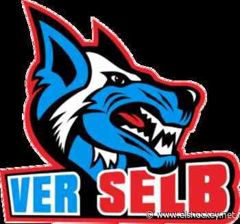 Selb mit nächster Neuverpflichtung - Eishockey.net - OLS - Eishockey.net