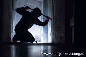 Geislingen - Einbrecher suchen Skaterpark heim und machen reiche Beute - Stuttgarter Zeitung