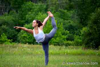 Outdoor yoga comes to 4th Line Theatre's Winslow Farm in Millbrook in August - kawarthaNOW.com