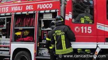Canicattì, brucia l'auto di un operaio: indagini in corso - Canicatti Web Notizie