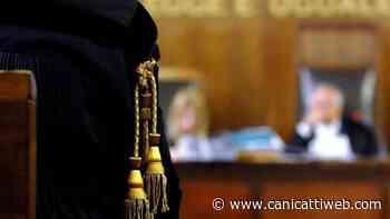 Imputato 86enne assolto dall'accusa di intralcio alla giustizia - Canicatti Web Notizie