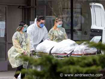 Pandemic has added significantly to Canada's overall death toll: Ontario study - Airdrie Echo