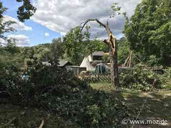 Unwetter: Beseitigung von Sturmschäden in Strausberg dauert an - Märkische Onlinezeitung