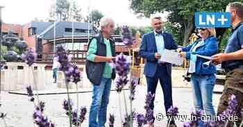 Wahlstedt: Marktplatz wird Beach-Club mit Livemusik - Lübecker Nachrichten