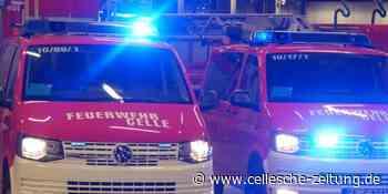 Polizei Celle ermittelt wegen Brandstiftung nach Feuer in Wohnung - Cellesche Zeitung