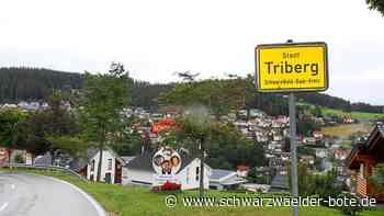 Triberg/Schonach: Nachtschwärmer vertauschen Ortsschilder - Triberg - Schwarzwälder Bote
