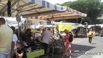 """Mercato della domenica a Marina di Carrara, il """"trasloco"""" è promosso a pieni voti - Il Tirreno"""