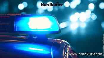 Mann mit Chihuahua und Schwert in Greifswald gefunden - Nordkurier