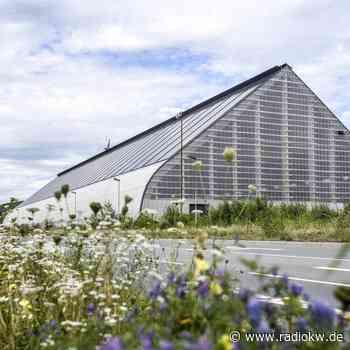 Kohlenmischhalle in Dinslaken-Lohberg wird jetzt versteigert - Radio K.W.