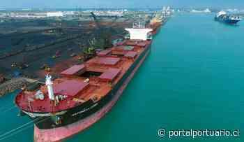 México: Puerto de Altamira suma 9 millones de toneladas transferidas en el primer semestre - PortalPortuario