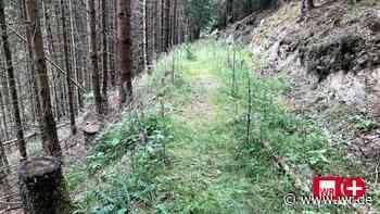 Zwischen Winterberg und Medebach: Der einsamste Ort in NRW - WR