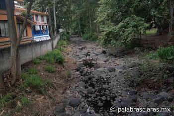 Agentes municipales se oponen a entrega de tierras en Coatepec por daño ecológico - PalabrasClaras.mx