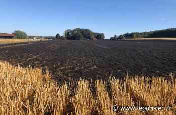 Courdimanche-sur-Essonne : une famille relogée après un feu de chaume - Le Parisien