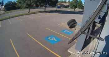 Wheelie bad luck: Rogue tires crash into Prince Albert business