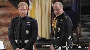 Wegen Charity-Geldern: Ermittlungen gegen Harry und William - Promiflash.de