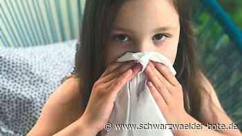 Donaueschingen - Keine Betreuung für kranke Kinder - Schwarzwälder Bote