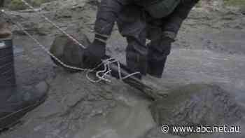 Woolly mammoth skeleton found in lake in Russia's Arctic